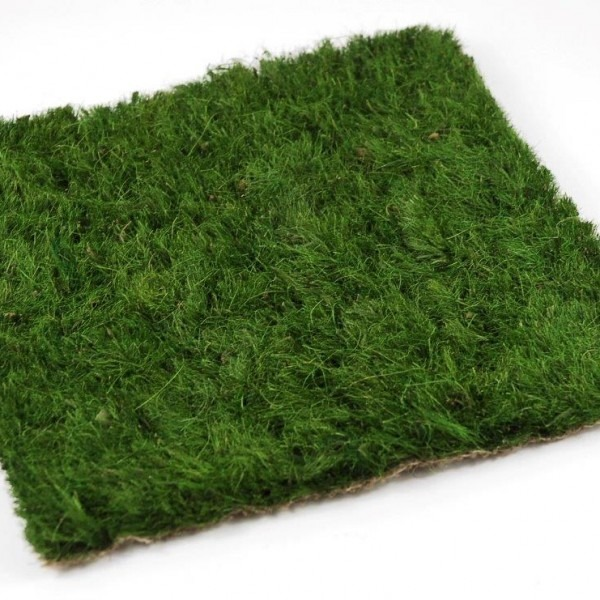 Buy Fake Grass Dubai Artificial Grass Amp Installation