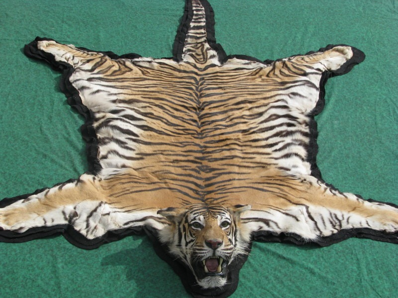Tiger rugs cow hides zebra rugs in dubai carpets dubai
