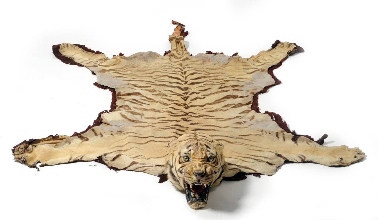 Tiger Rugs, Cow Hides, Zebra Rugs in Dubai, Carpets Dubai