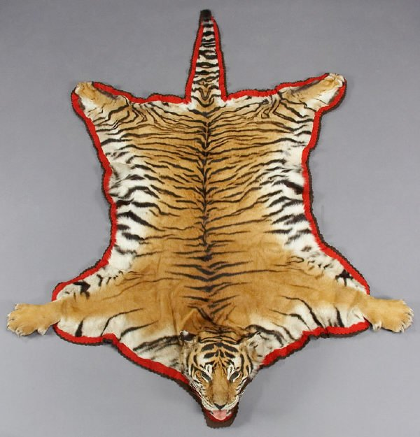 Buy High Quality Tiger Rug In Dubai,Abu Dhabi & UAE
