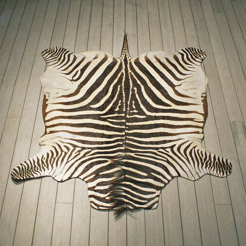 Buy Zebra Rugs In Dubai,Abu Dhabi Across UAE